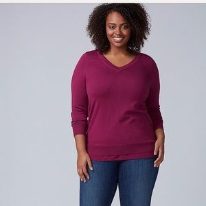 Lane Bryant V Neck sweater